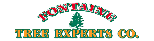 Fontaine Tree Logo